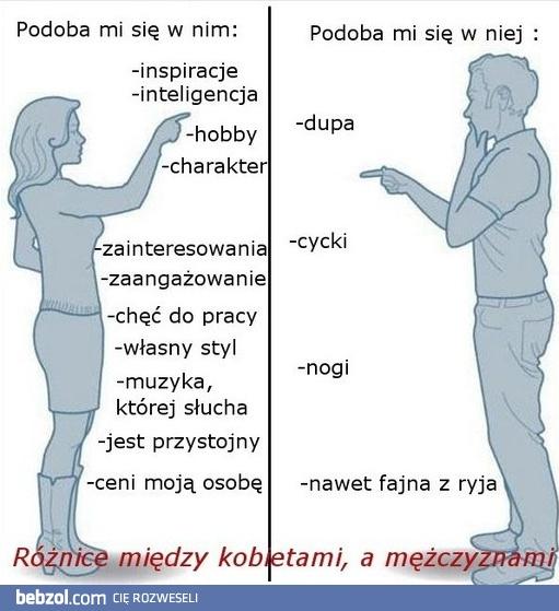 57a6716f958b0a Różnica między kobietą, a mężczyzną | bebzol.com
