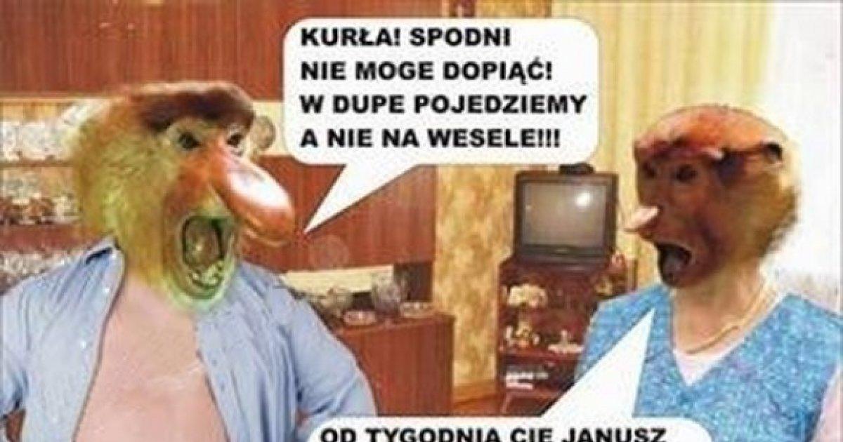 Janusz Z Grażyną Idą Na Wesele Bebzolcom